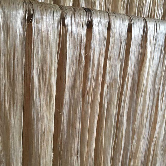 日本麻フェスティバルin鹿沼にて麻を筆頭に自然繊維の着物たち - from Instagram